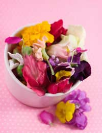 Edible Flowers Diet Food Rose Nasturtium