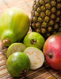 Tropical Fruits Pineapple Noni Fruit