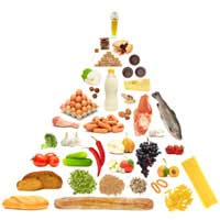 Nutrition Nutrient Fat Carbohydrates
